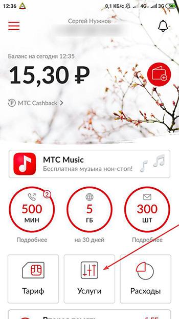 Отключение МТС музыки: Заходим в приложении МТС в раздел Услуги